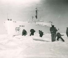 Ice Liberty
